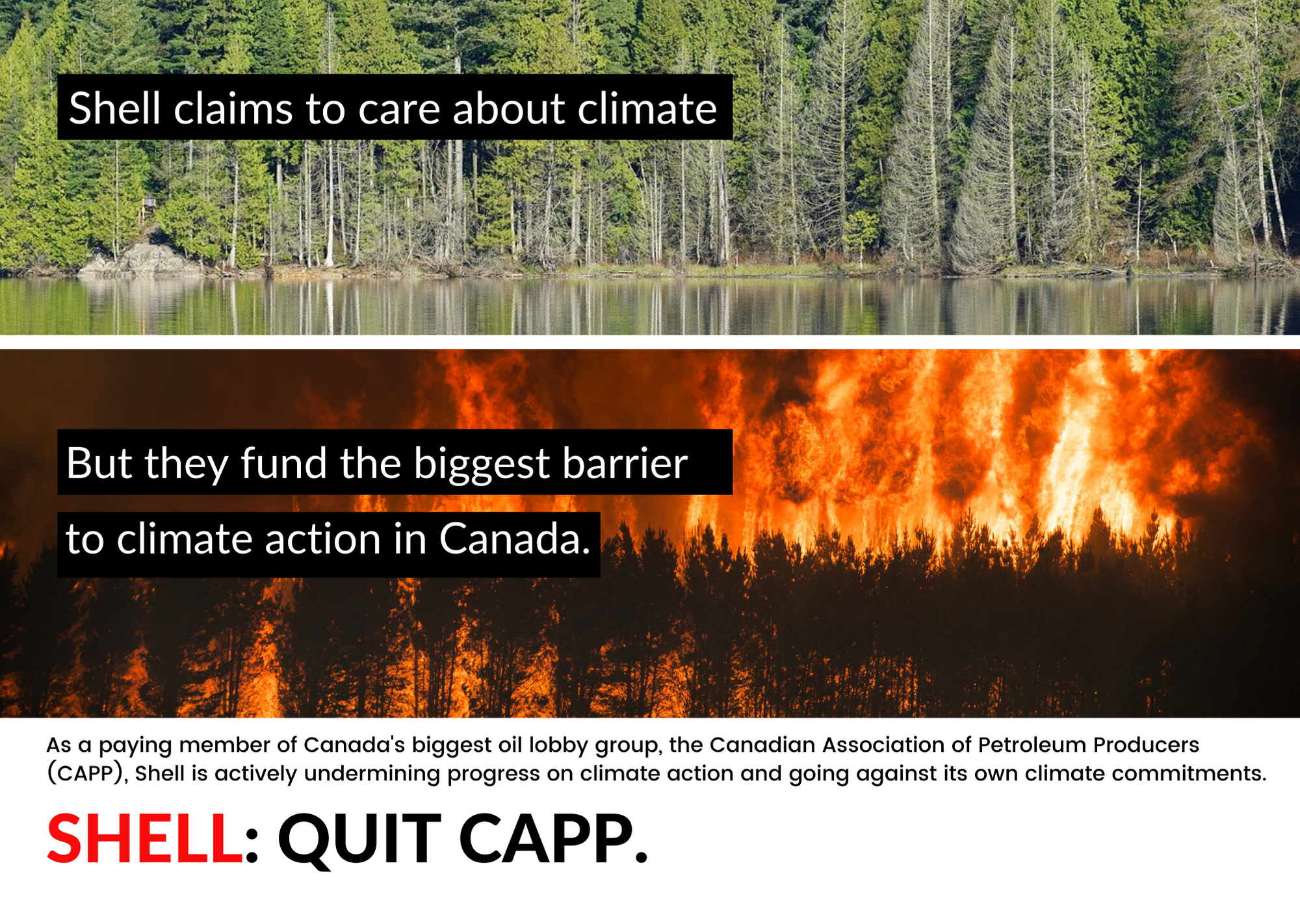 Ad calling on Shell to quit CAPP